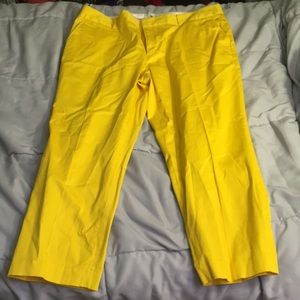 NWT BR yellow crops